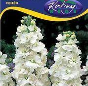 Seminte flori Mixandre (Matthiola incana) albe 0.50g