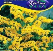 Seminte flori Saraturica (Limonium sinuatum) galbena 0,5g