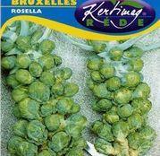 Seminte varza de Bruxelles Rosella 2g