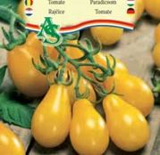 Seminte Tomate Yellow Pearshaped (2g)