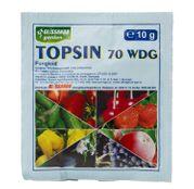 Fungicid Topsin 70 WDG (10 g, 100 g, 300 g, 500g, 1 kg)