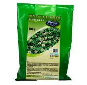 Seminte Trifoi Alb (Trifolium repens L.) (50g,100g, 500g, 25kg)