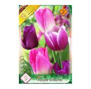 Bulbi de flori Lalele Trio Purple Dreams 9buc