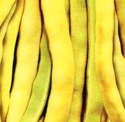 Seminte fasole Goldmarie (100g, 500g)